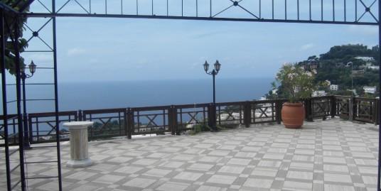Villa vista mare in affitto a Capri